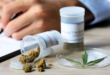 ESTUDIO LOCAL SOBRE CONSUMO DE CANNABIS CON FINES MEDICINALES